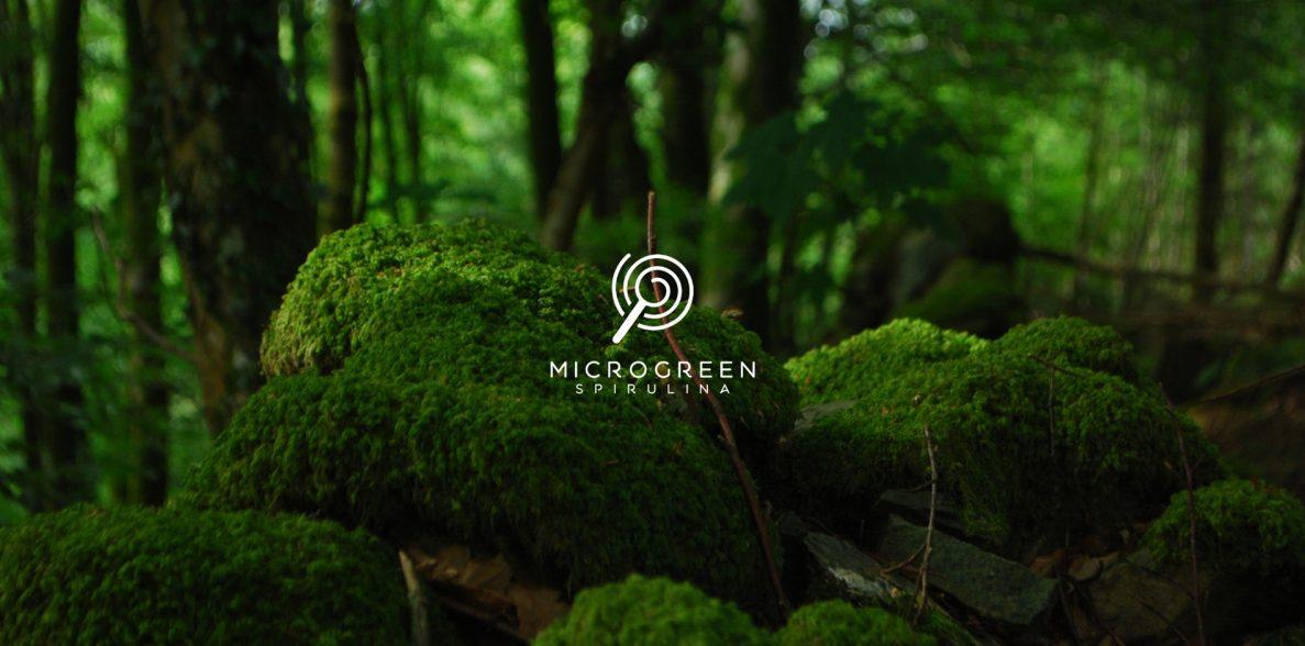 sostenibilidad-del-medio-ambiente
