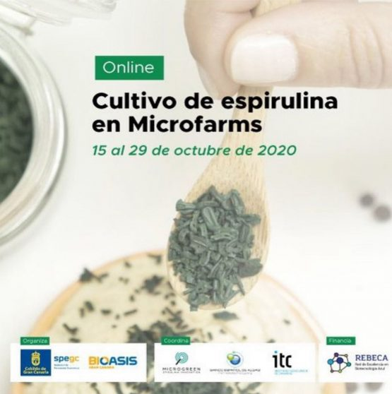 Cultivo de Espirulina en Microfarms – Foro Internacional